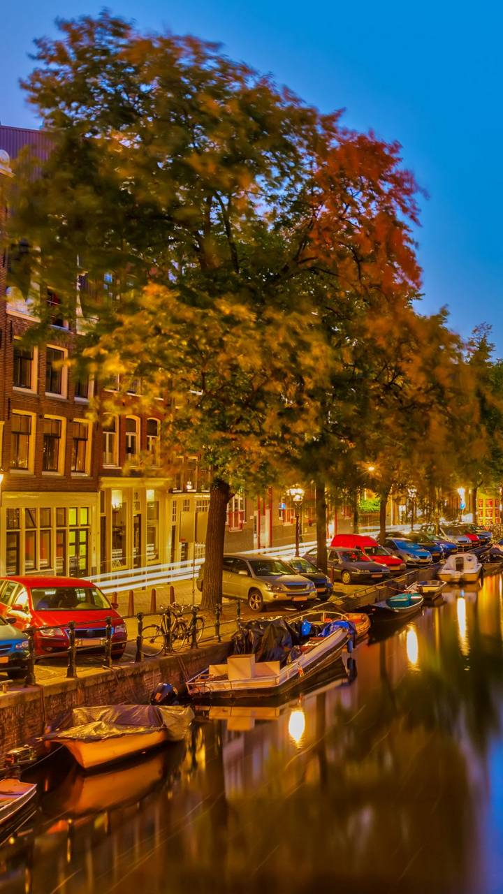 Amsterdam Canal 3
