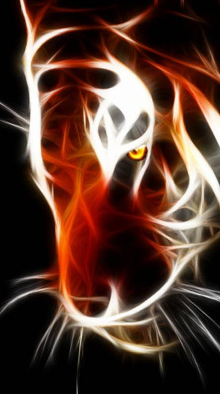 Bengals Wallpapers - Free by ZEDGE™