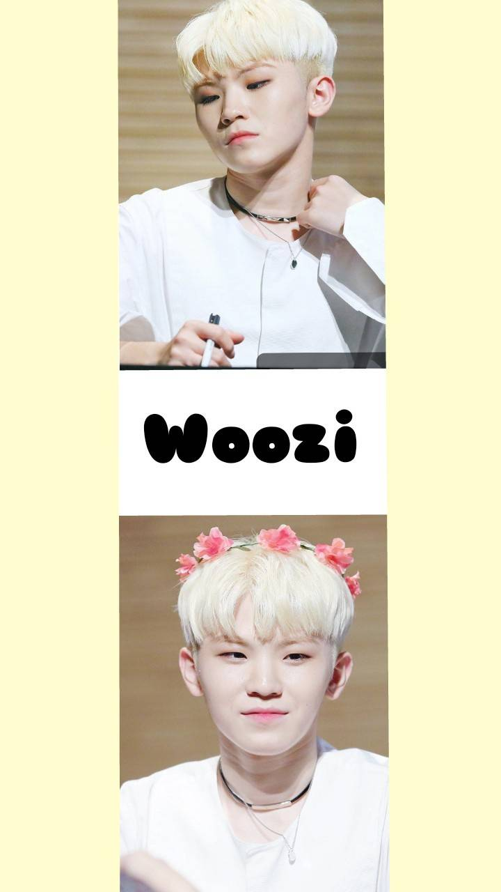 Seventeen Woozi Wallpaper By Daehwispanty 68 Free On Zedge