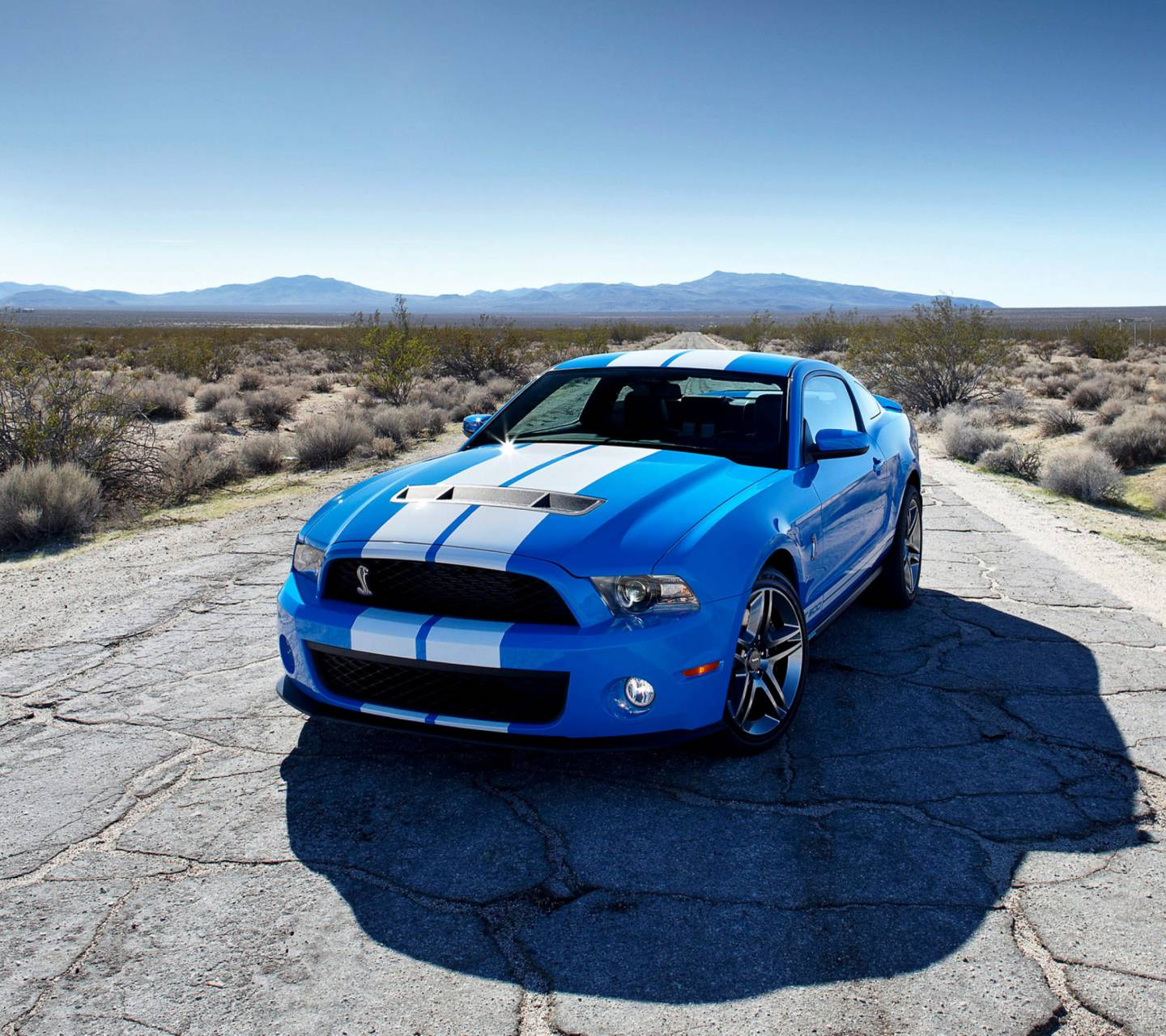 Blue Ford Mustang GT
