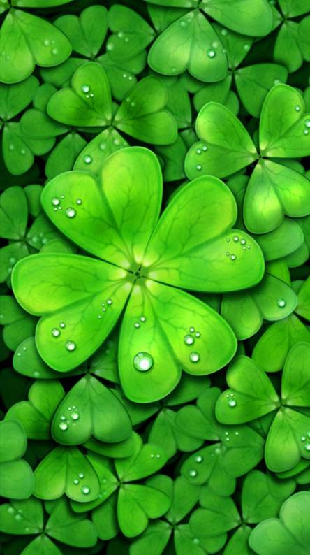 Four leaf clover Wallpapers - Free by