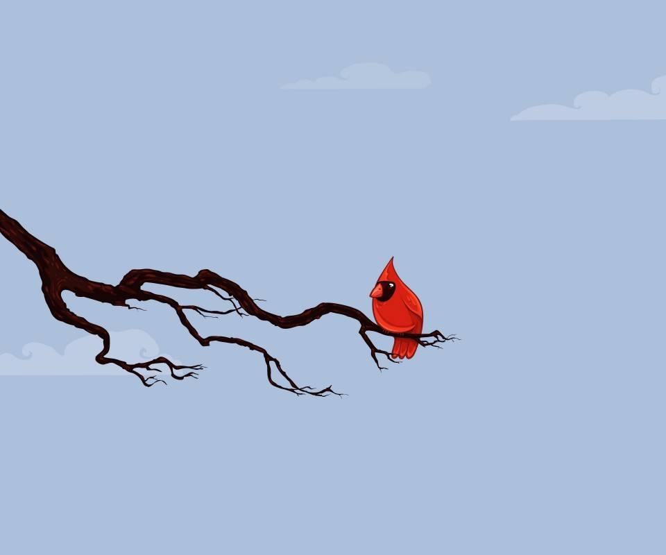 Red Cute Bird