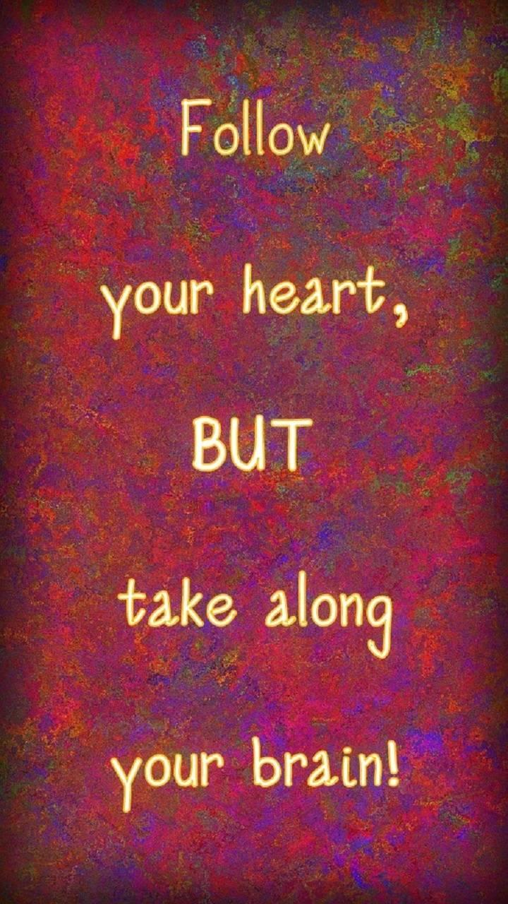 Follow Heart Brain