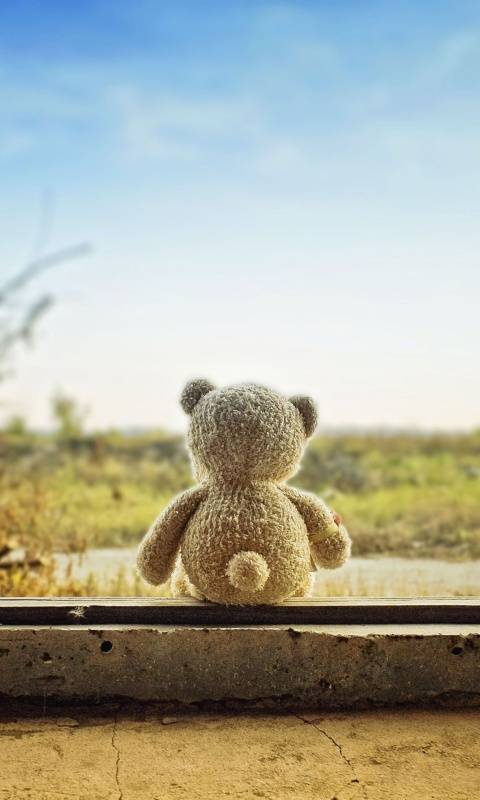 Lonely Teddy Beer