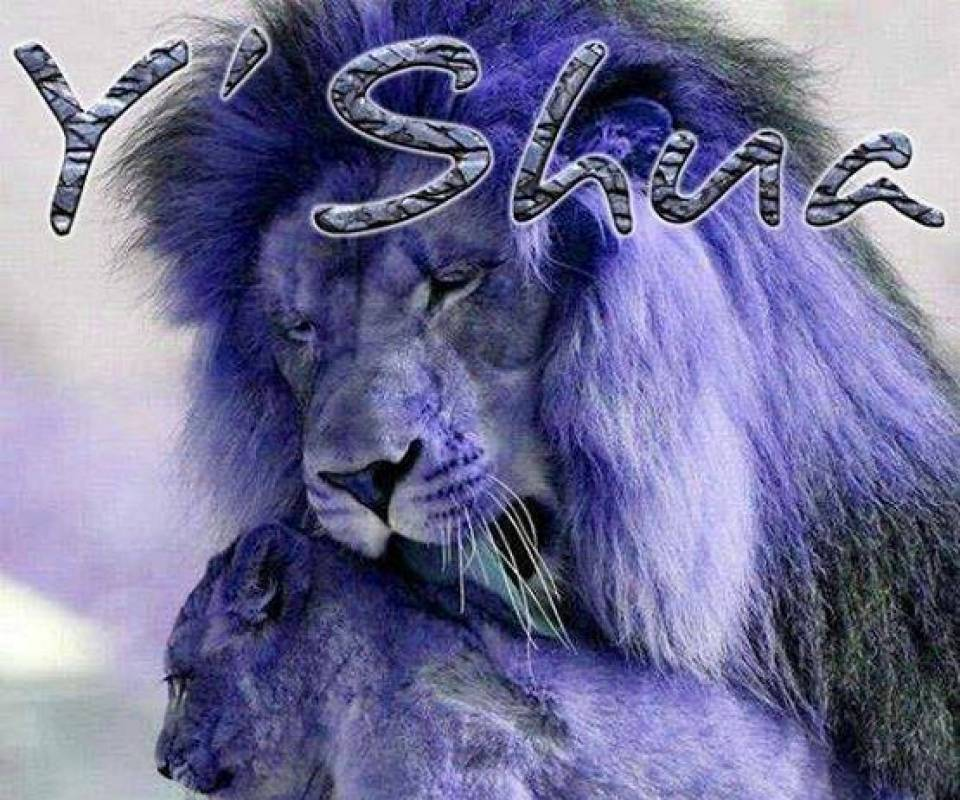 Yeshua the Lion