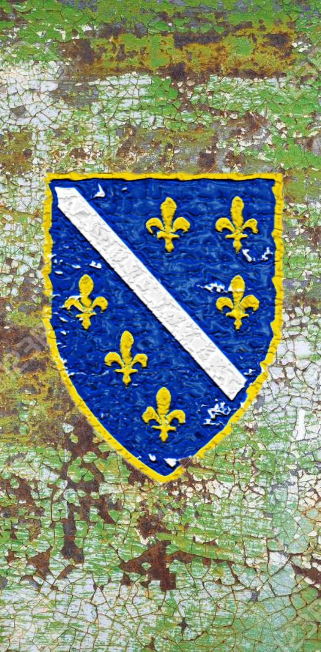 Grb Bosne Republike
