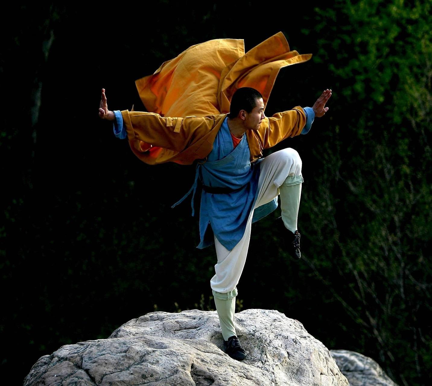 shaolin monk Wallpaper by troublemakervi - 5e - Free on ZEDGE™