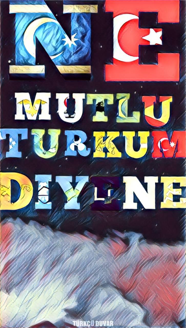 Turkcu Duvar