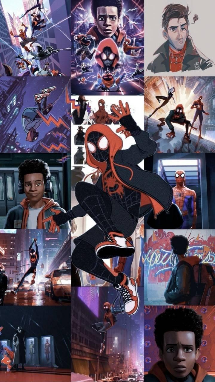 Spider Verse Collage