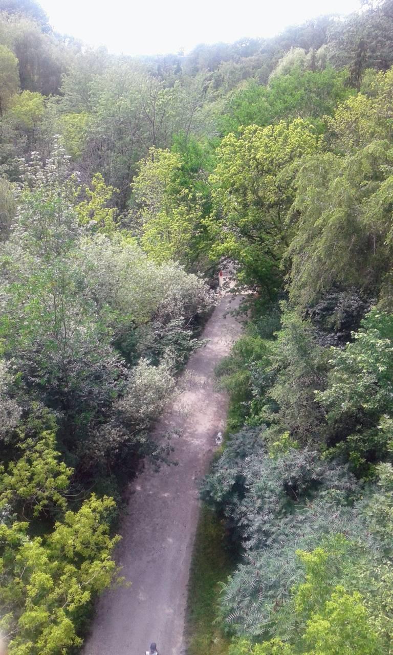 The TrailPath