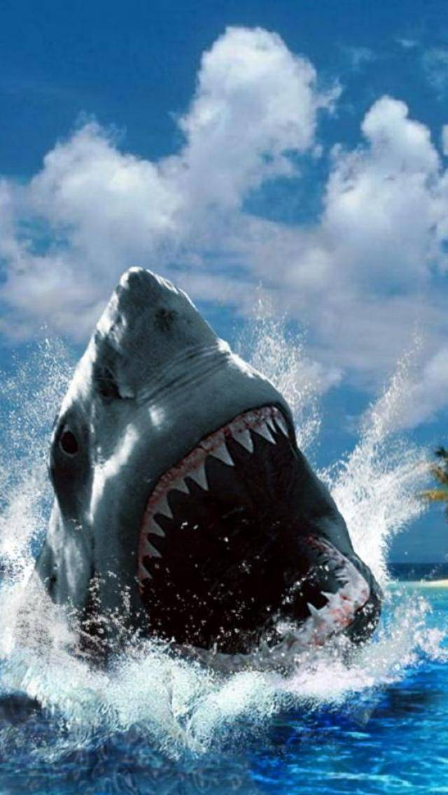 Cool Jaws