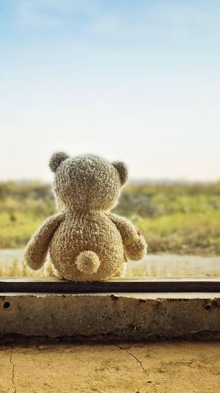 Sad Teddy Bear Wallpapers
