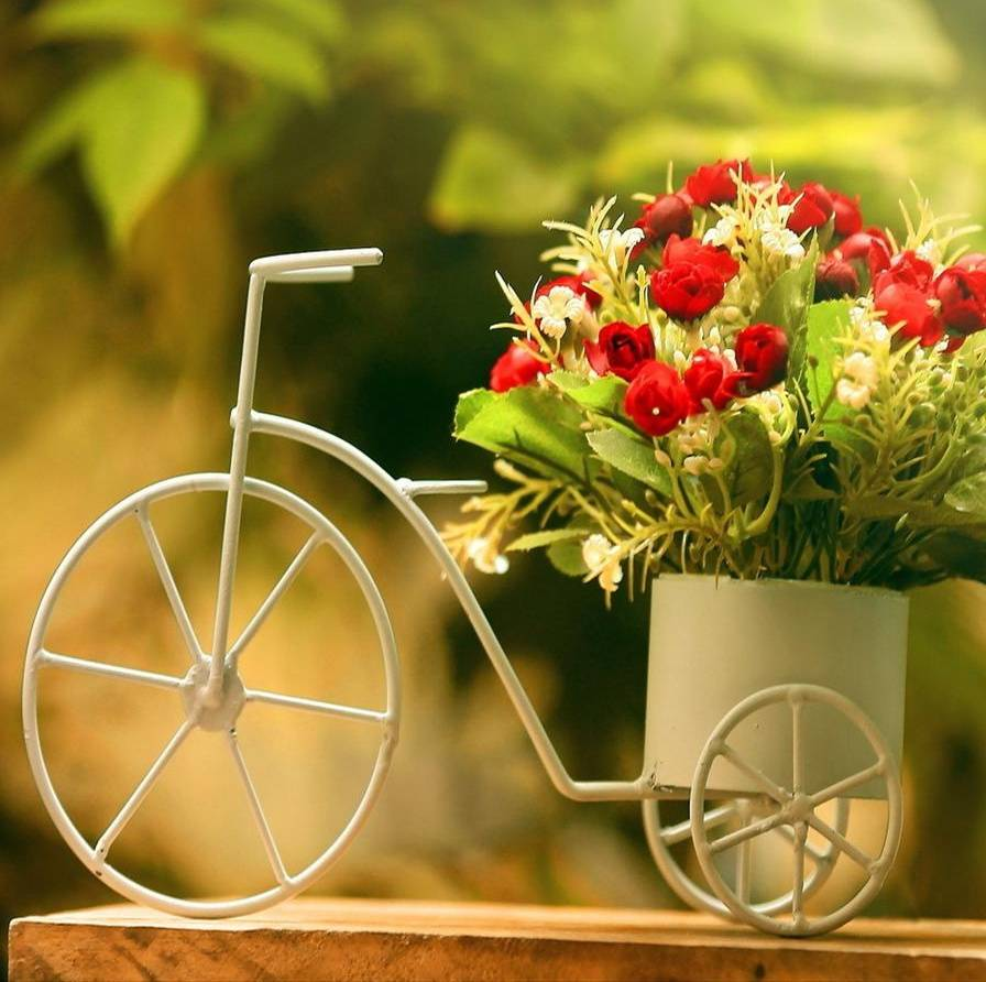 Bicycle Flowers Wallpaper By Abubaker_G