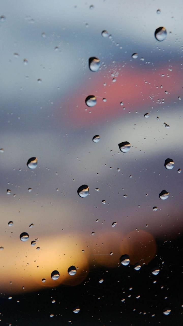 Rainy Window Wallpaper By Sherrilynn80 17 Free On Zedge
