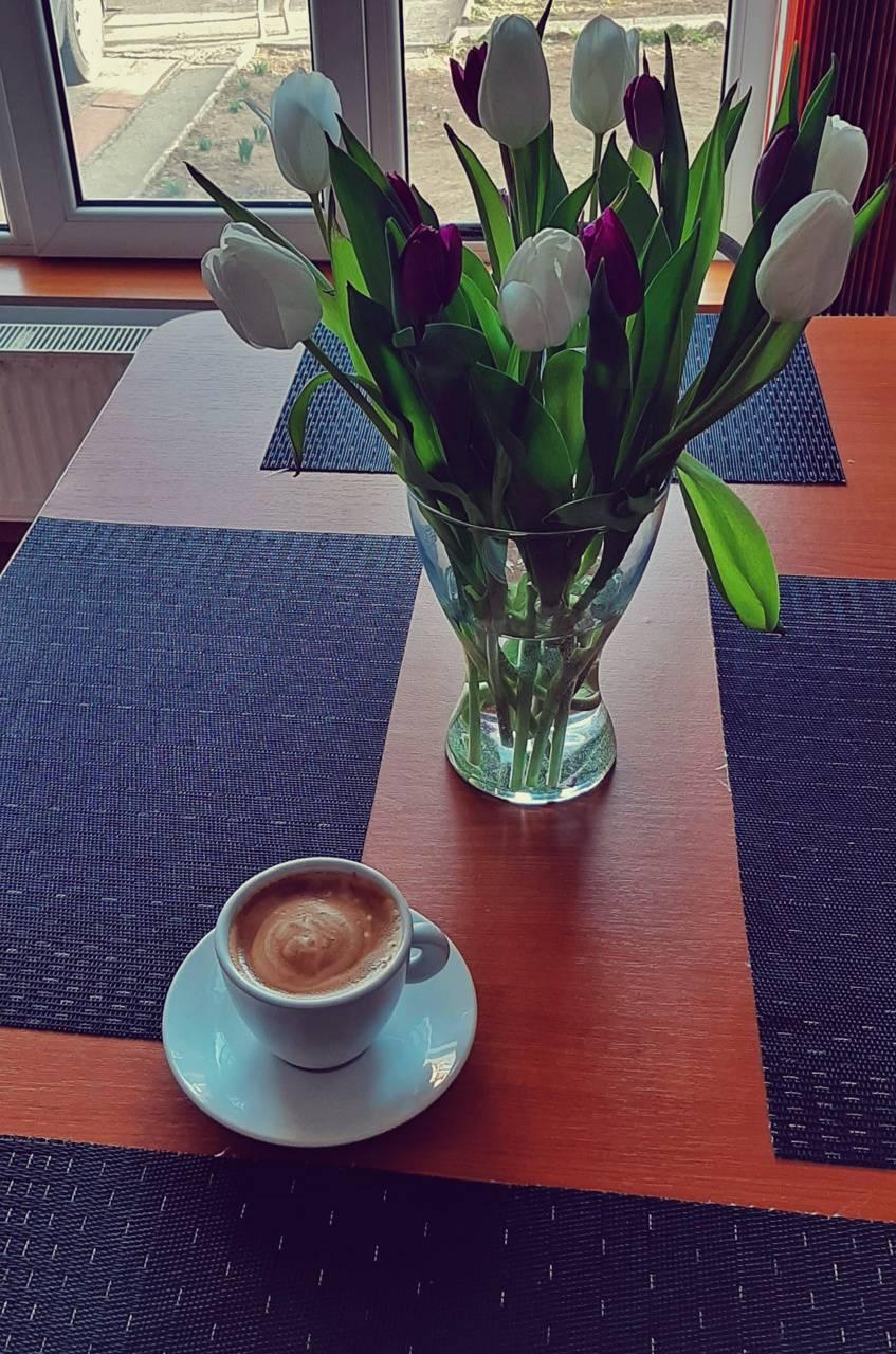 Tulip coffe