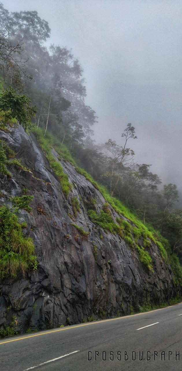 Kerala wayanad