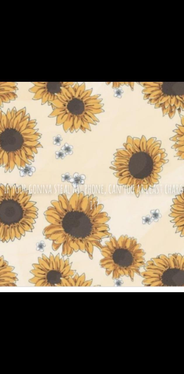 Sunflower Phone Meme