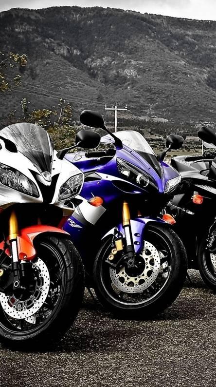 3 Yamaha Bikes