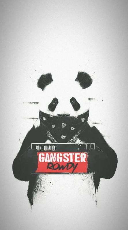 Gangster panda