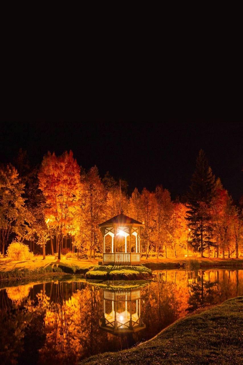 Gazebo At Night