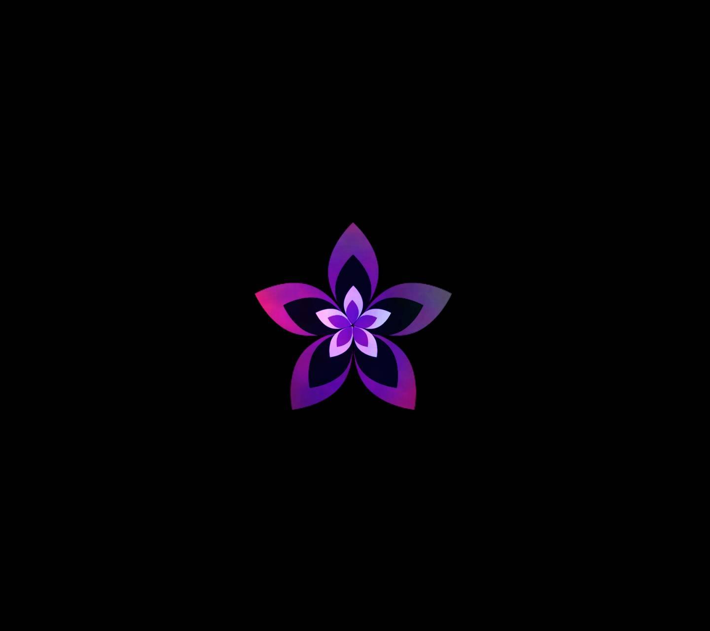 Beautiful Flower 50
