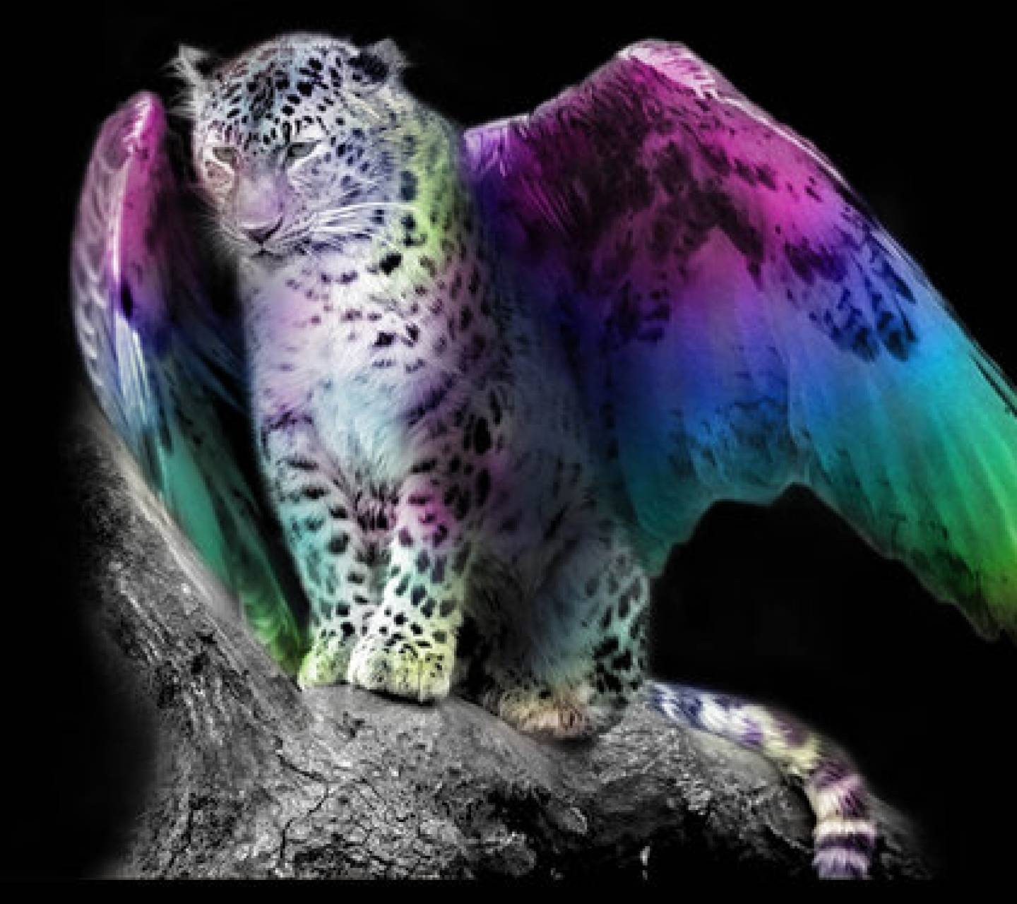 Leopard with wings