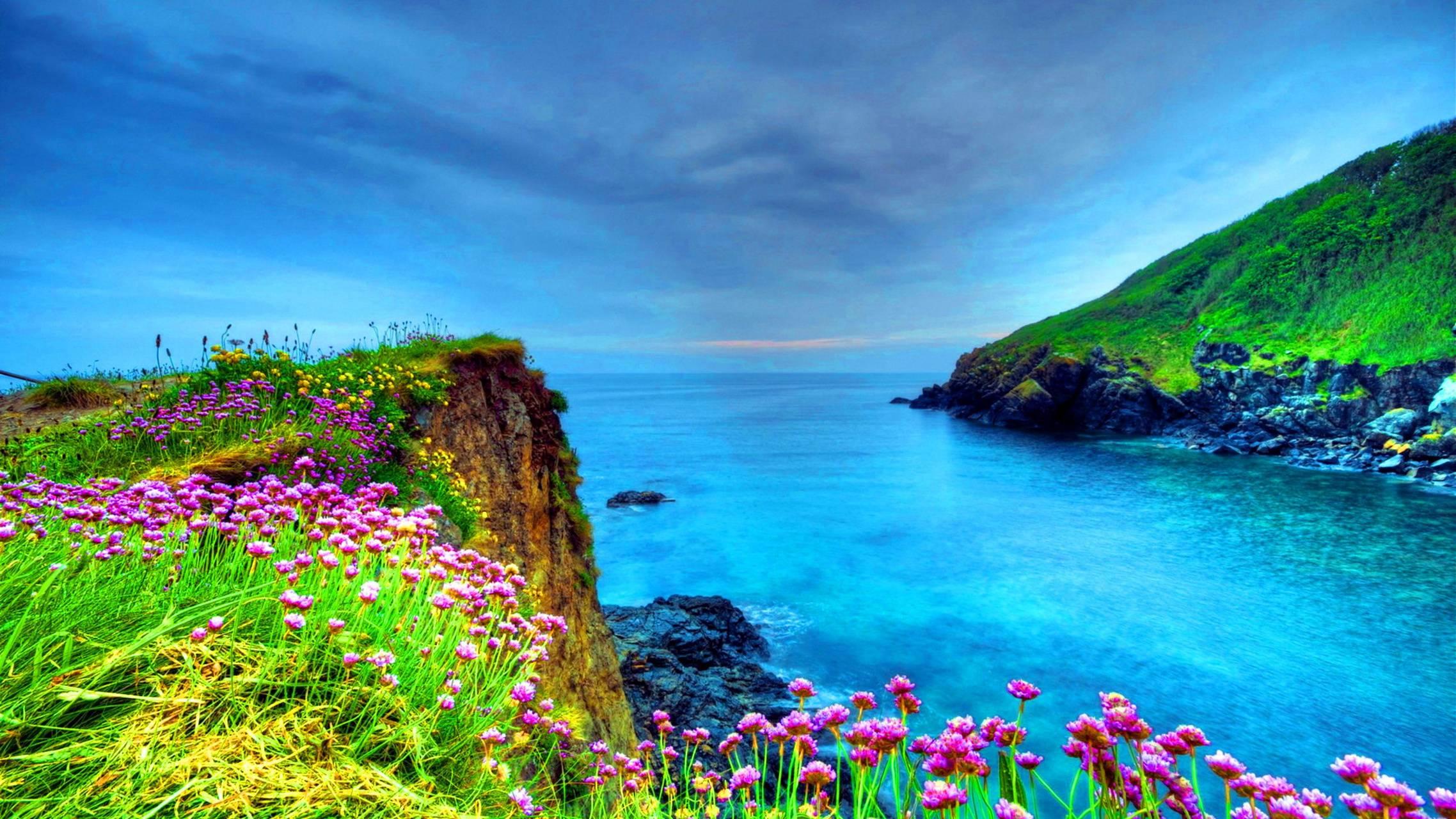 Sea view flowers