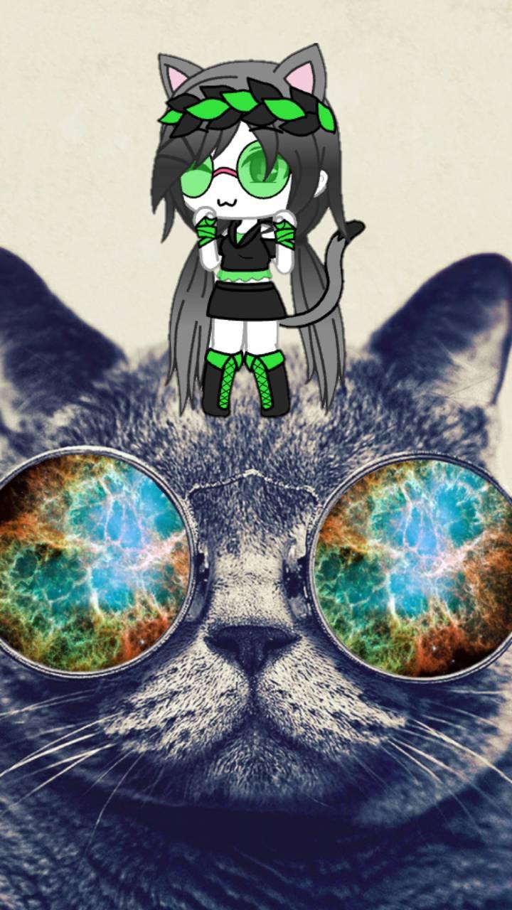 Like cat like gacha