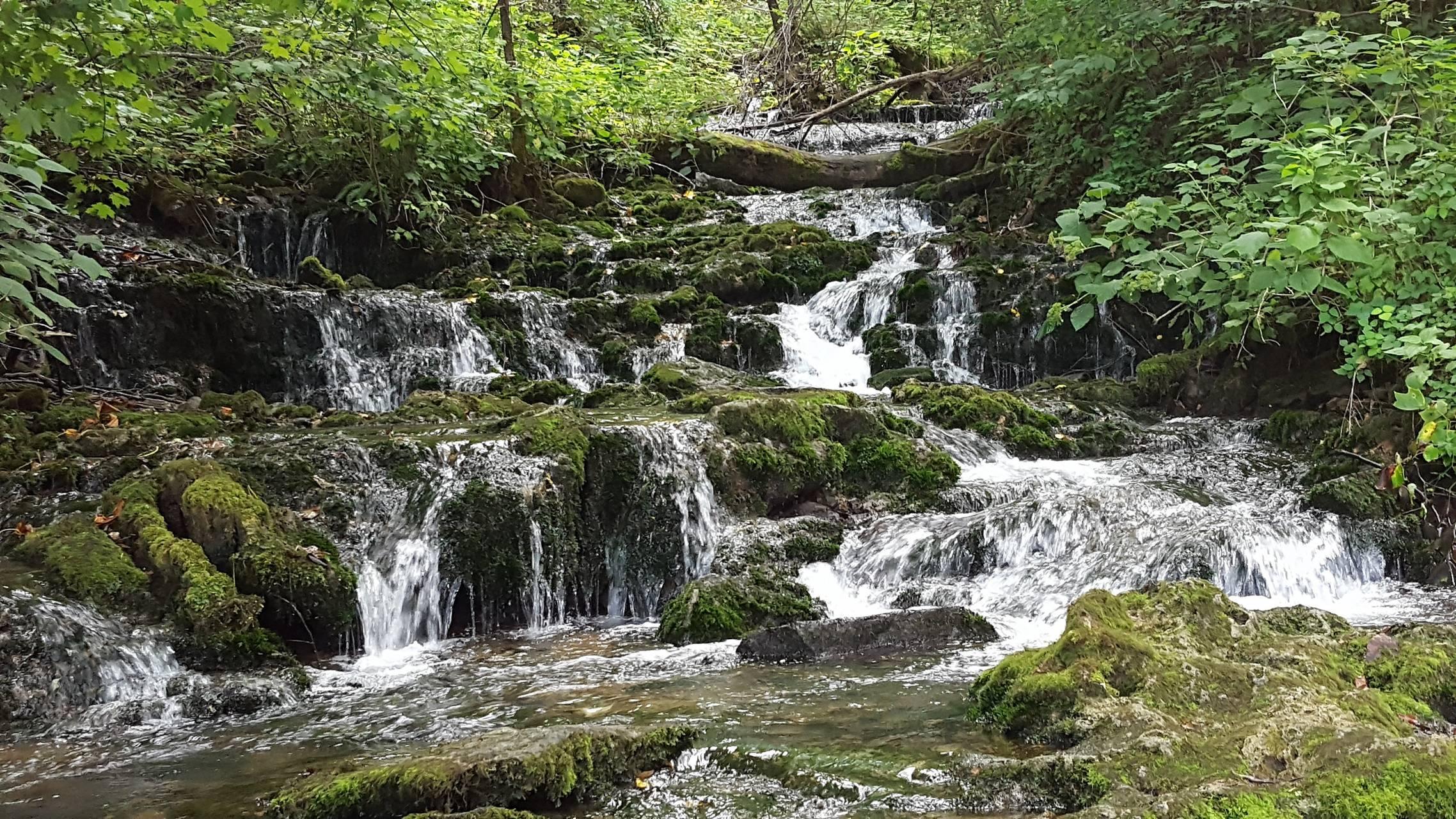 Kentucky Stream