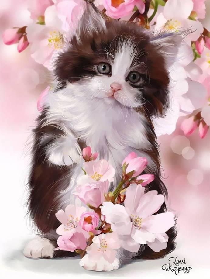 Картинки, открытки розы и кошка