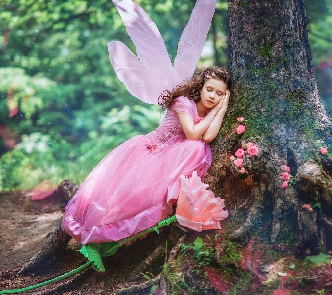 fairy sleeps
