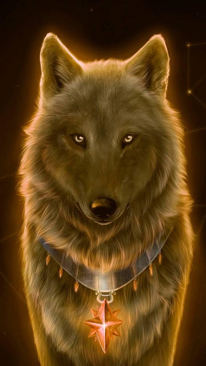 wolf yellow zedge