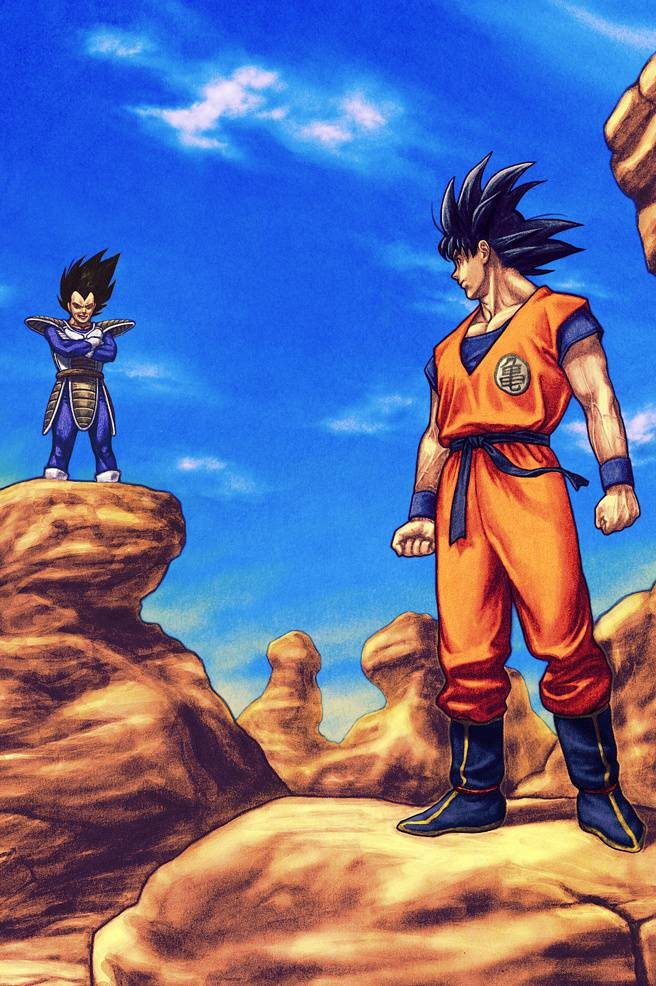 Goku And Vegeta Iphone Wallpaper
