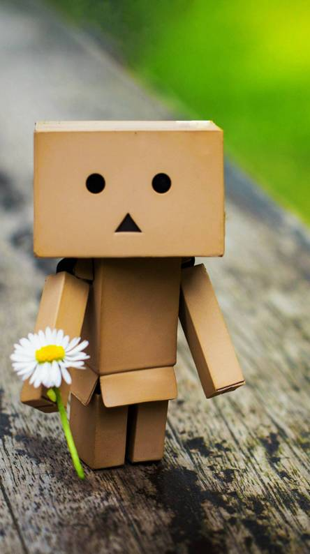 Amazon box flower