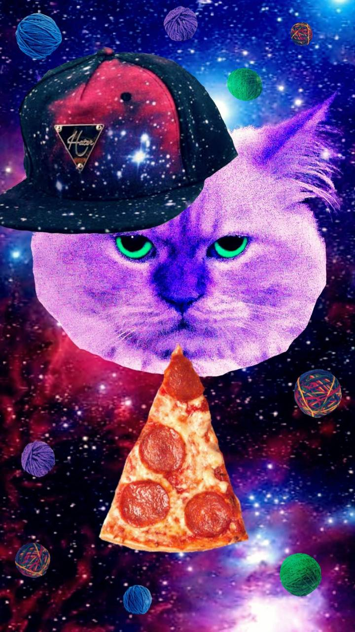 PIZZA CAT IN SPACE