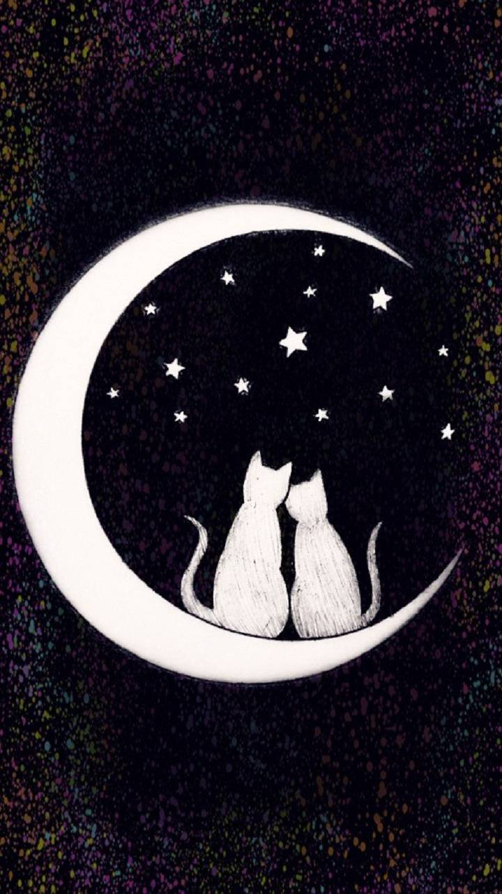 Moon Cats Love