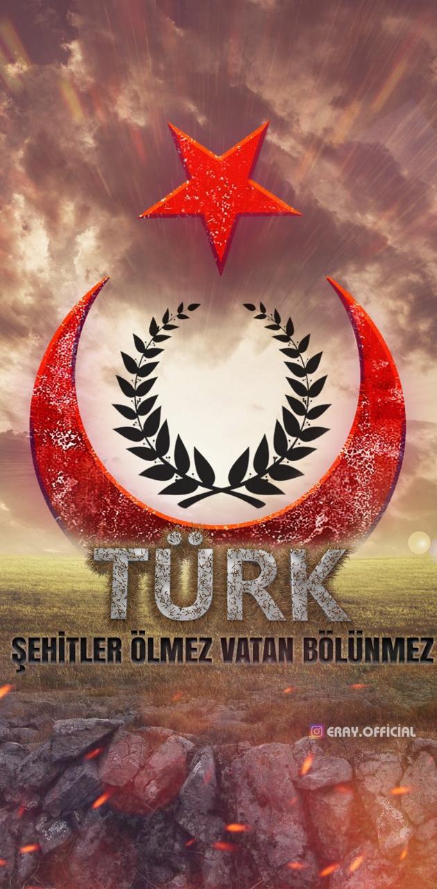 Turk ayyildiz