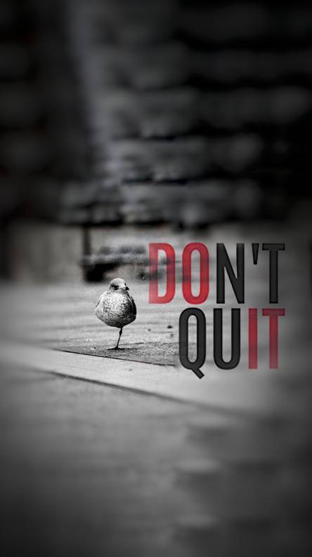 Motivational Wallpapers Free By Zedge