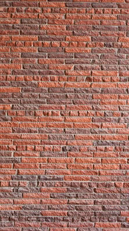 Wall Hd