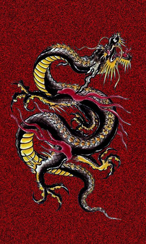 Chinese Dragon Wallpaper By Shaneandsherry 41 Free On Zedge