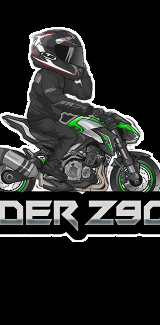 Rider z900