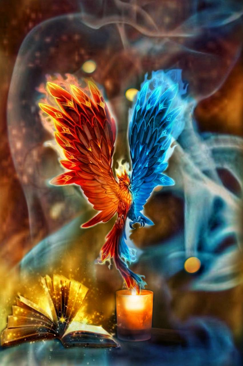 Fire And Ice Wallpaper By Lordbeeruss 99 Free On Zedge