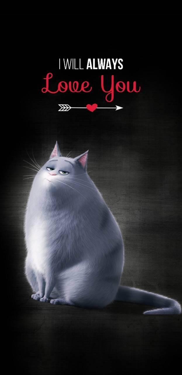 Meow Love