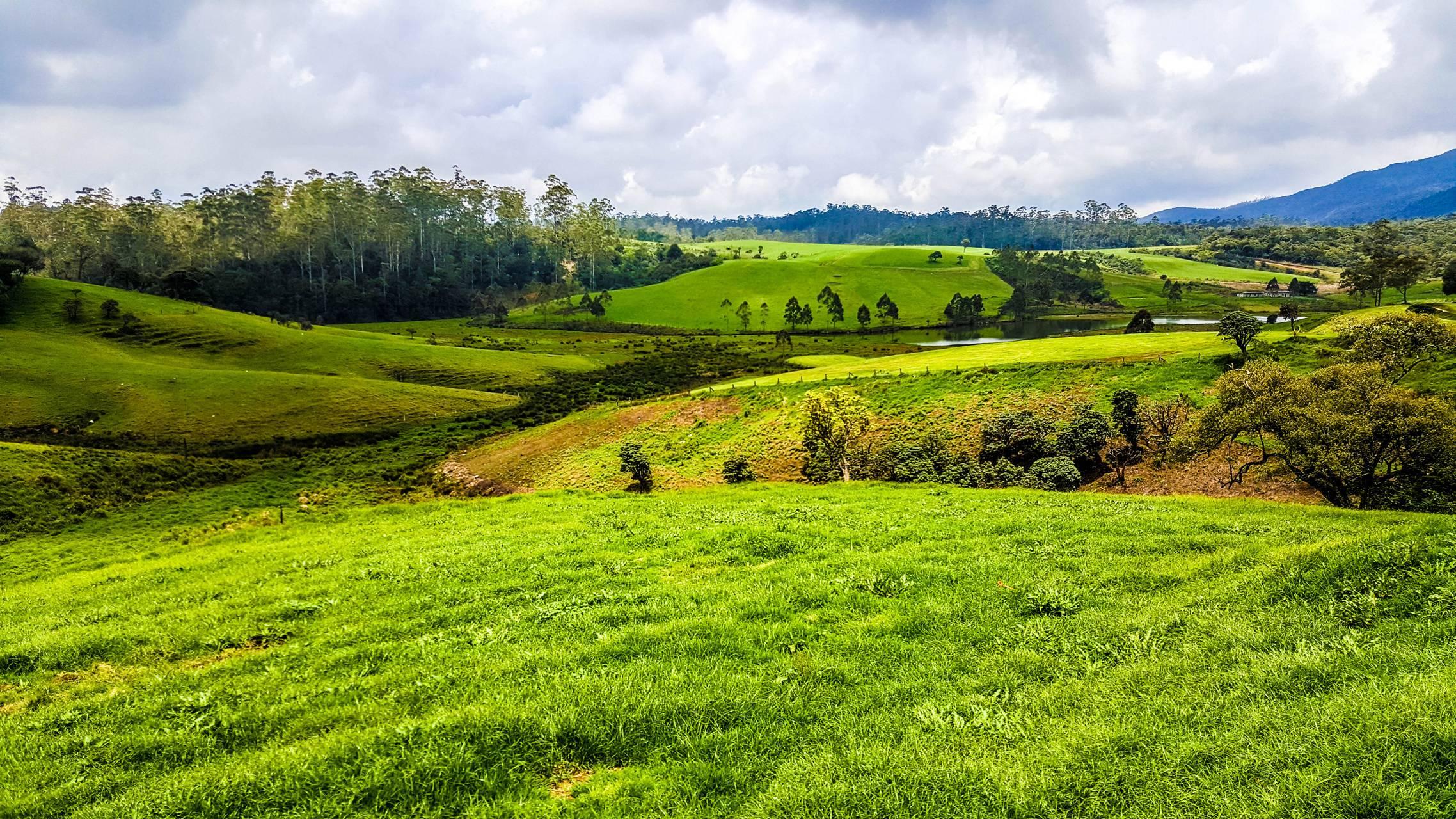 green haven SL