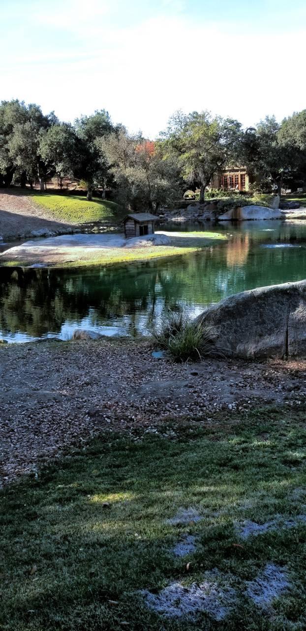 House Pond
