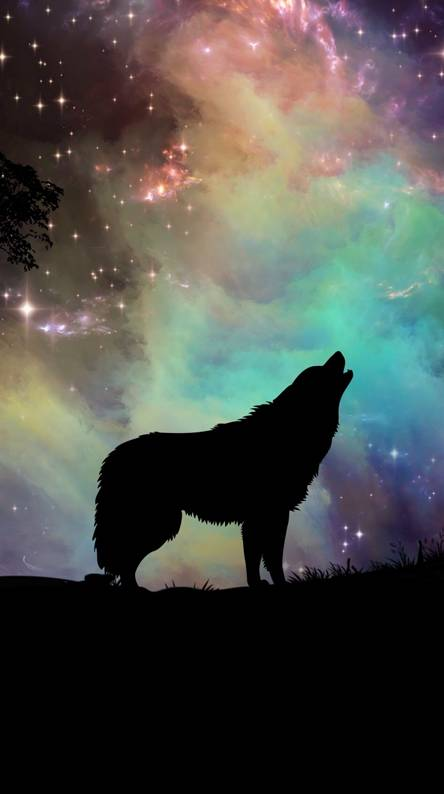 Dark Wolf Wallpapers Free By Zedge