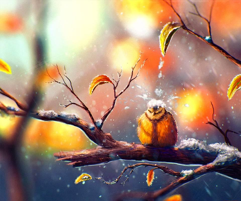 sweet bird