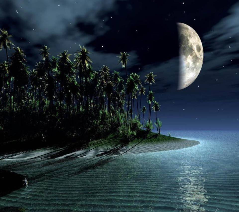 Открытка лунная ночь, тебе моя
