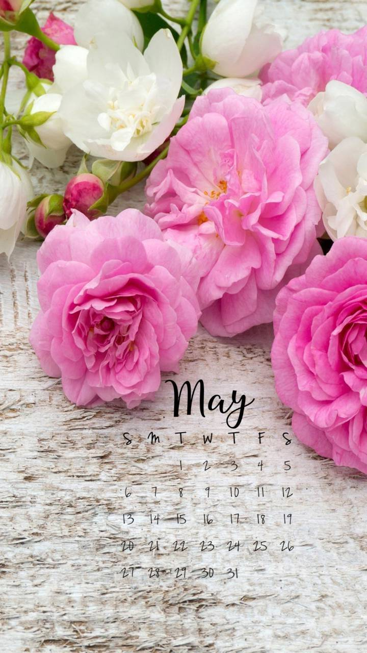 May Flowers 2018