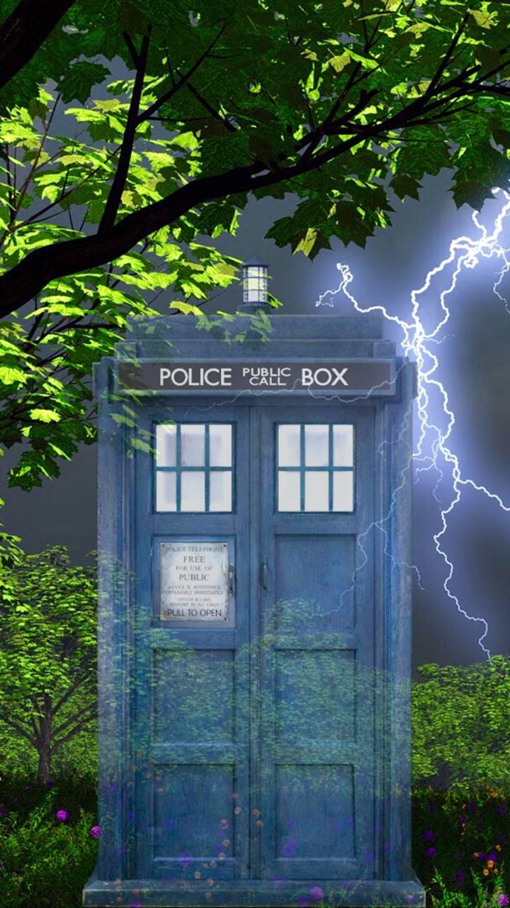TARDIS Storm